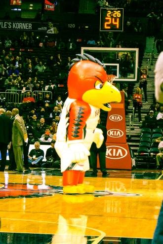 Hawks Mascot