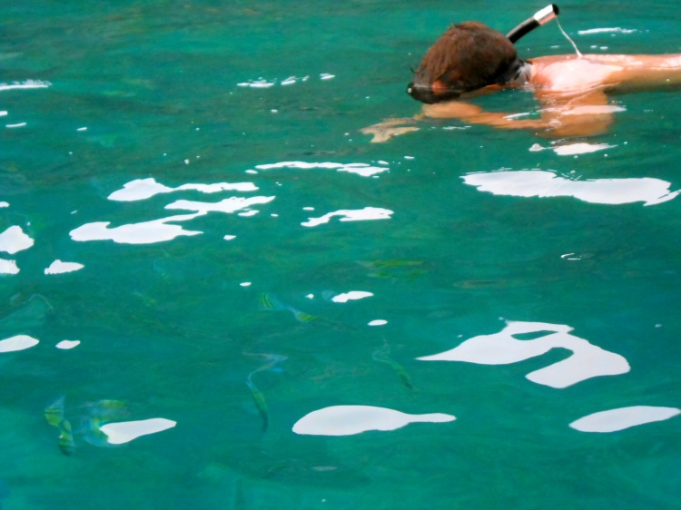 RG snorkeling