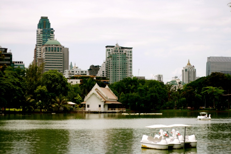 Lumpini Park...Swan paddle boat? Yes, please!